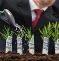 Fostering associates growth